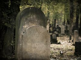 New Jewish Cemetery in Wroclaw, Poland by OkeMani