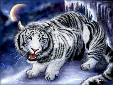 White Ice Tiger by oomu