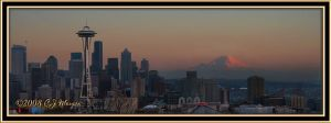 Mt Rainier Panorama by e-CJ