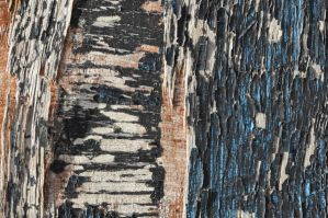 painted wood texture four by density-stock