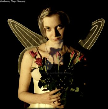 Fairy (DSCF4692 #1a CDB) by Chattering-Magpie