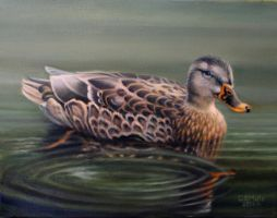 Duck by Wolverat