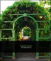 Green Arch by Ribbonstock