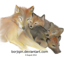 Wolf Family by borjigin