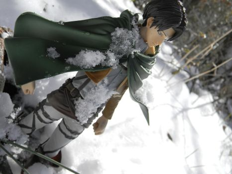 Levi in the Snow by thenacken