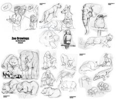 zoo drawins by bigmac996