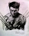 Wolverine by legend518