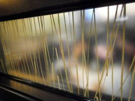 glass panel inside of mcdonald's by ginseng