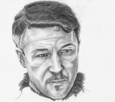 Petyr Baelish - Lord of the Vale by paletan
