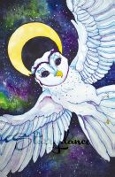Owly McMoonface by Starrydance