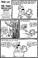 ASK A CAT: Seeing Eye Cat by bakertoons