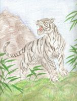 White Tiger of the West by kheidarian