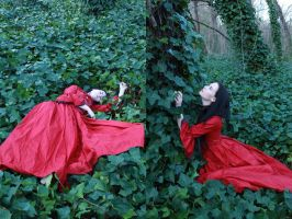 petit chaperon rouge 3 by magikstock