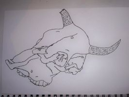 Line Drawing of Skull by Kat2805
