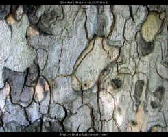 Tree Bark Texture 02 by ALP-Stock