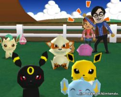 my pokemon ranch by jigglepuff6