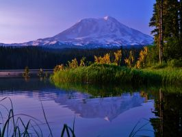 Mount Adams Reflection at Serene Takhlakh Lake by FluttershyIsMagic