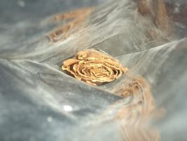 Dried rose by Imaginative-girl