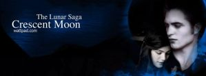 The Lunar Sage: Crescent Moon Poster by darknEi