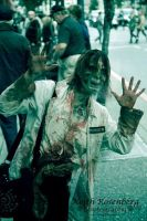 zombie 2014  in a glass case of emotion by animeloving-Okami