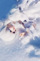 Falling Snow by ria-photobook