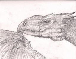 Dragon Series: 7- Close up Dragon by TheWolverineCello