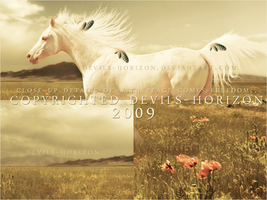 details -- with peace comes.. by devils-horizon