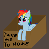 Dash in a box by Ailynd