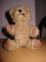 TeddyStock by MadamGrief-Stock