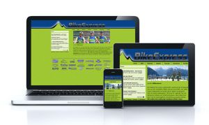 Team Bike Express- Piesendorf (Responsive) by pinzweb