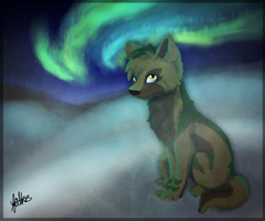 Northern Lights by Falkzii