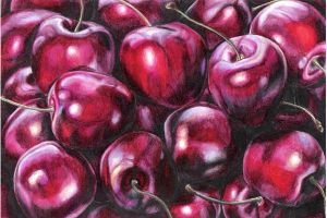 Cherries by Prismacolorists