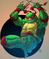 Raphael Coloured by jonathan-rector