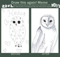 Hedwig before and after by Fabala4good