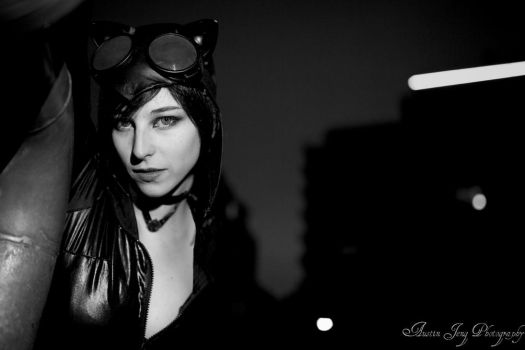 Catwoman in the city by Shroker