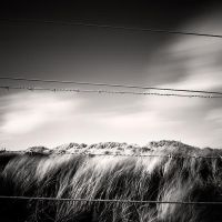 Barbed Wire by Jez92