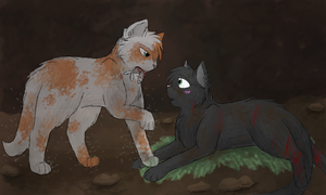 Fallen Leaves and Hollyleaf by CascadingSerenity