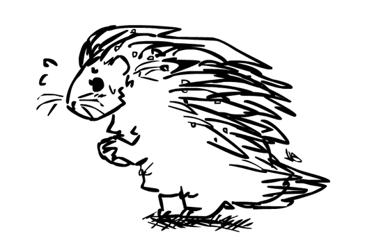 cartoon porcupine with dandruff by peppermlnt-sprite