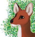 Trade:: Musk Deer by TzikiiWolf