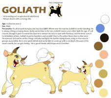 Goliath Reference Sheet by CottonConfection