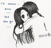I'll never let you go by zenab-tareef