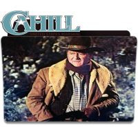 Cahill U.S. Marshal 1973 icons by Heatwave95