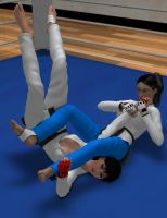 Request: Judo fight 4 by Sorr0wfullWhit3Raven