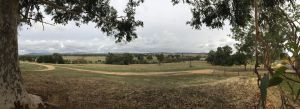 Near Albury, New South Wales by dpt56