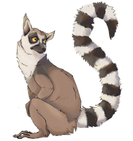 Lemur by Savel-Eve