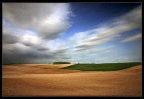 polish summer no. 9 by Sesjusz
