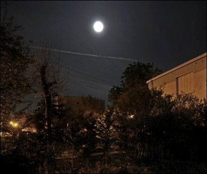 Garden, Moon and Chemtrail by SUDOR