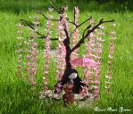 Origami crane bonsai and doll by cridiana