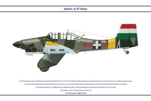 Ju 87 Hungary 1 by WS-Clave