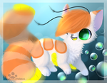 :Bubbles: by PrePAWSterous